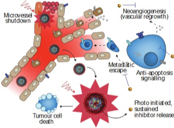 Photoactivatable nanoscale drug delivery